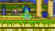 Sonic's final flame