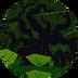Biome 1