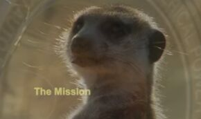 The Mission.jpg