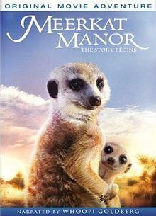 Meerkat Manor The Story Begins.jpg