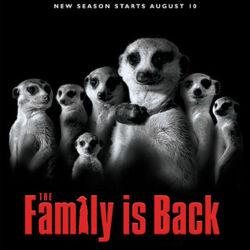 Fictional Meerkats