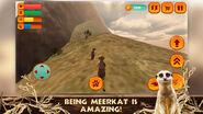 Meerkat Simulator (app)