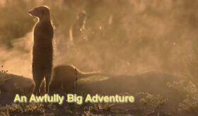 An awfully big adventure.jpg