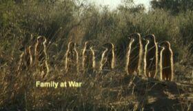Family at war.jpg