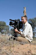 Cameraman and meerkat