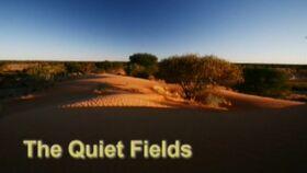 The Quiet Fields.jpg
