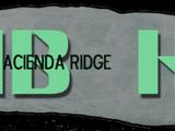 Hacienda Bridge no. 9