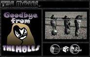 Bog-molesweb