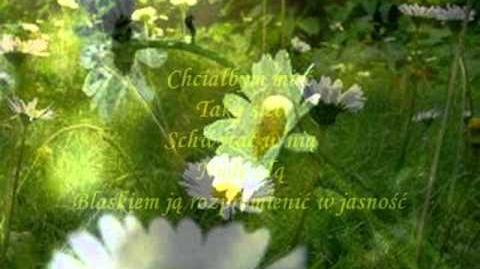 Michał Bajor - Chcialbym