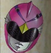 Pink Argus