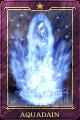 Aquadyne card IS.png