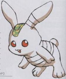 Hare of Inaba