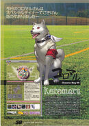 Koromaru blog