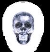 P2 IS Crystal Skull of Heaven.png