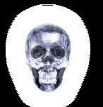 P2 IS Crystal Skull of Heaven