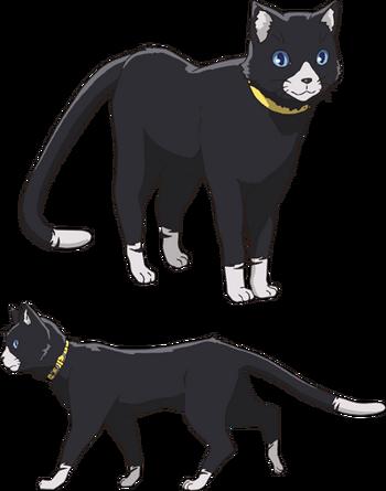 Anime (Cat)