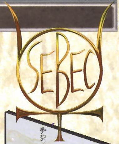 Saeki Electronics & Biological & Energy Corporation