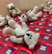 Teddy-Bear-e1457480122987-288x300
