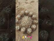 Seashell castle -- 5-18-2021 🐚🤍