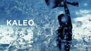 KALEO - I Want More -OFFICIAL AUDIO-