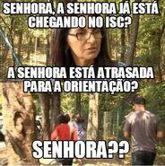 SenhoraISC