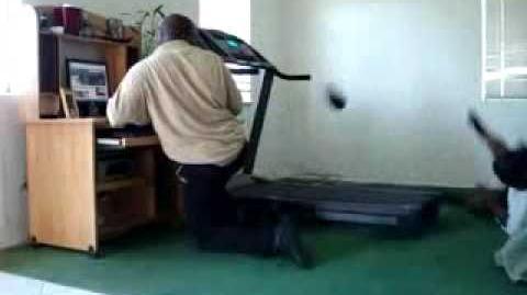 Play_him_off,_keyboard_cat