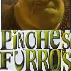 Pinches furros
