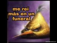 Me-rei-mas-en-un-funeral-5365-1