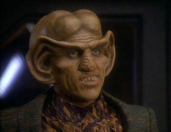 Quark in 2369