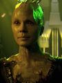 Borg-Königin (2375)