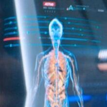 Kelpien internal medical scan.jpg