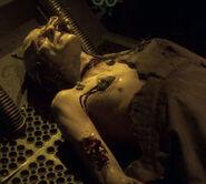 Deceased borg corpse