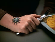 Seven Borg implant 3