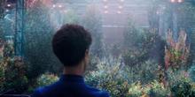 Сад на кораблі (Star Trek Discovery S01E03).PNG