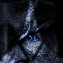 Star Trek Discovery Season 1 T'Kuvma poster.jpg