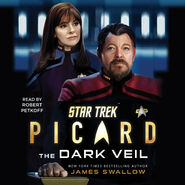 The Dark Veil audiobook cover