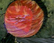 Wächter der Ewigkeit, vulkanisches Raumschiff