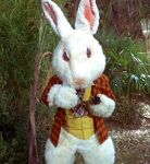 White Rabbit, 2267