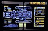 Yellowstone MSD
