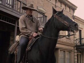 A horse being ridden by a Human man