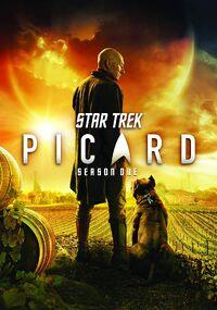 PIC Season 1 DVD cover.jpg