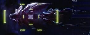 A gormagander on the main viewer of the USS Discovery