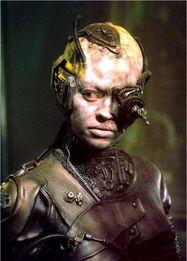 Seven-of-nine-as-Borg-seven-of-nine-11538147-303-423.jpg