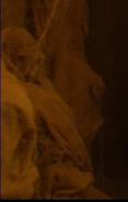 T'Karath Sanctuary mummy 6