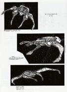 Miradorn raider concept