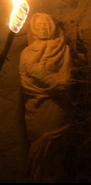T'Karath Sanctuary mummy 1