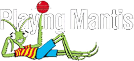 Playing Mantis