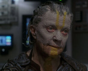 Nadet, a female Novan in 2151