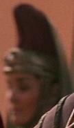 Observatrice (violet) fal tor pan 2285