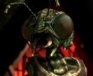 Xindi-Insektoide